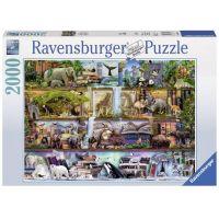 Ravensburger Stewart: Wild Kingdom Shelves 2000 dielov