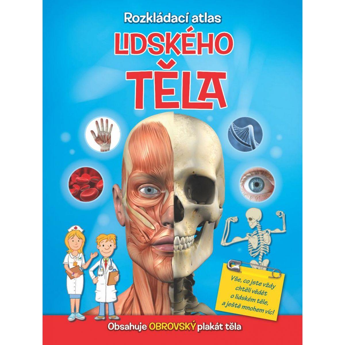 Rozkladacie atlas ľudského tela