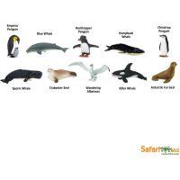 Safari Ltd Tuba Antarktída 2
