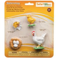 Safari Ltd Životní cyklus Kuře 3