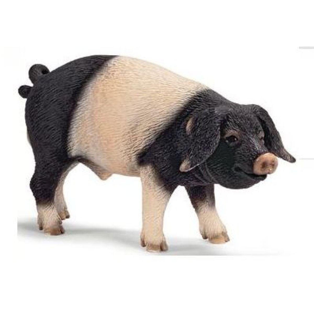 Schleich 13643 - Zvířátko - švábský vepř