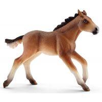 Schleich Farm Life Mustang Fohlen