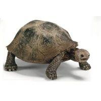 Schleich želva obrovská