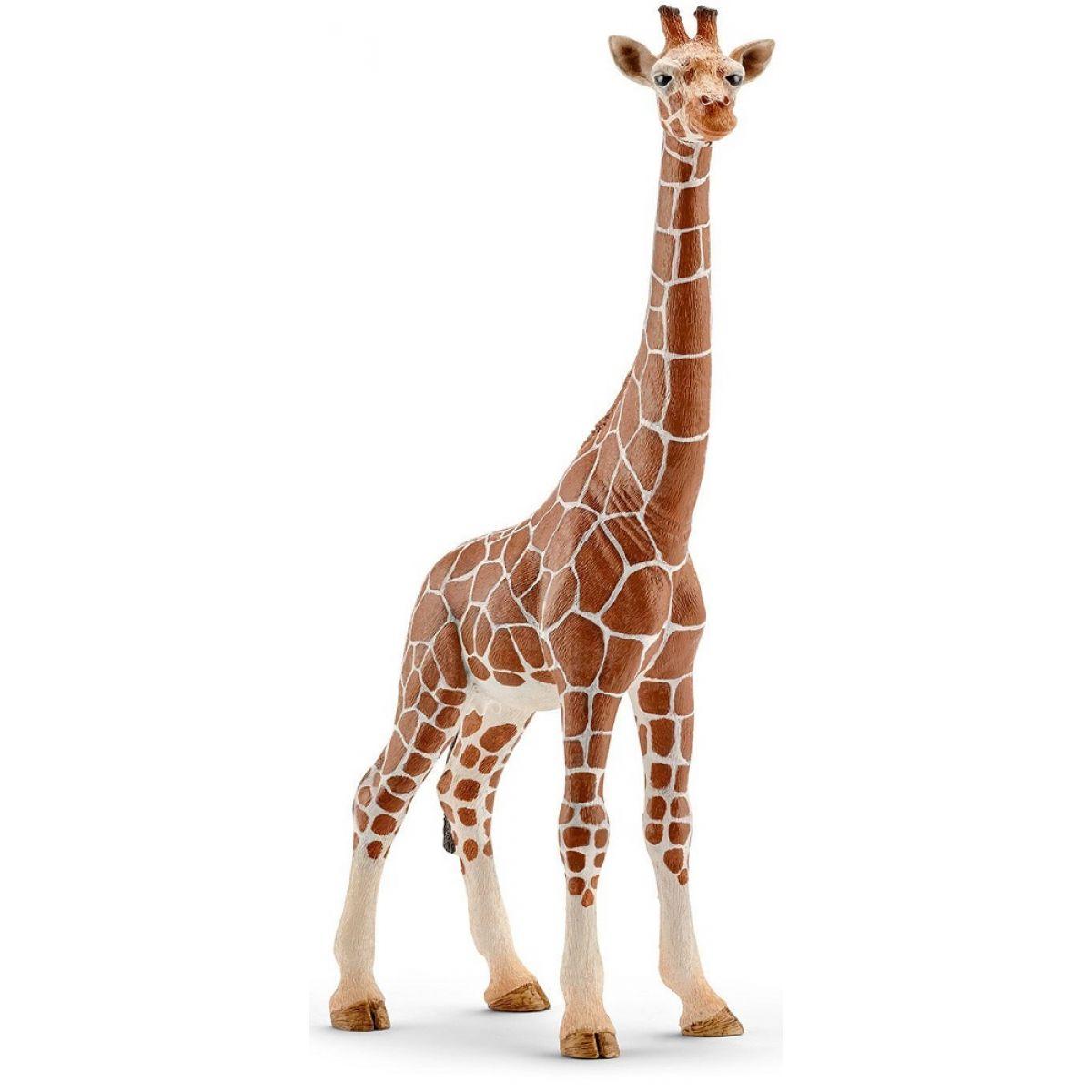Schleich 14750 Žirafa samica