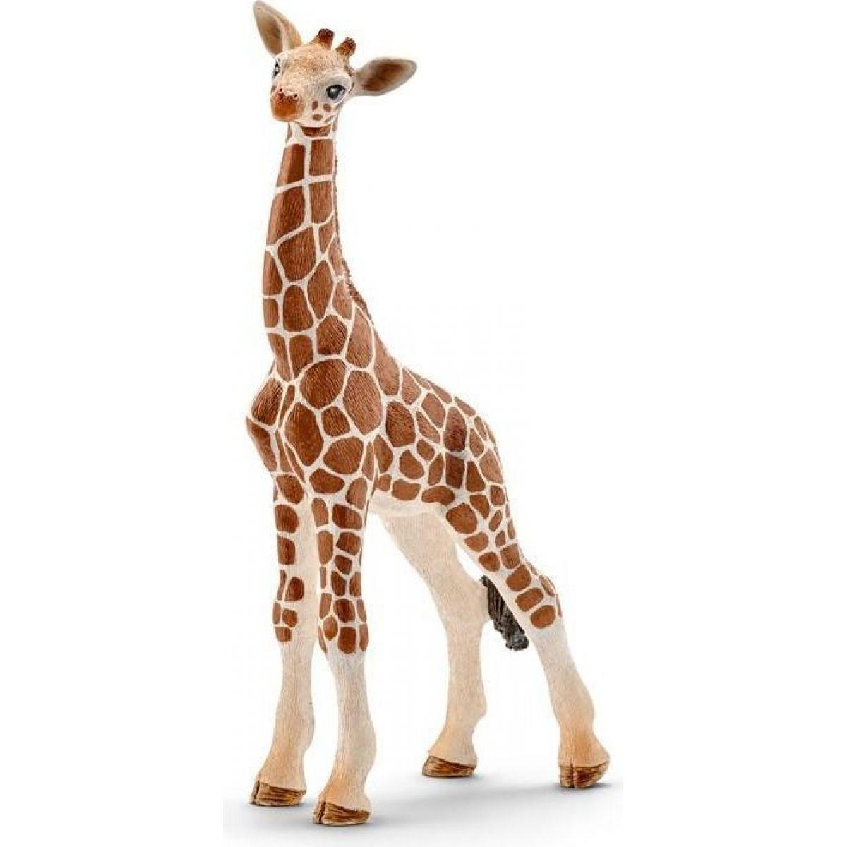 Schleich 14751 Mláďa žirafy