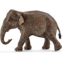 Schleich 14753 divoké zvieratko slon Ázijský samica