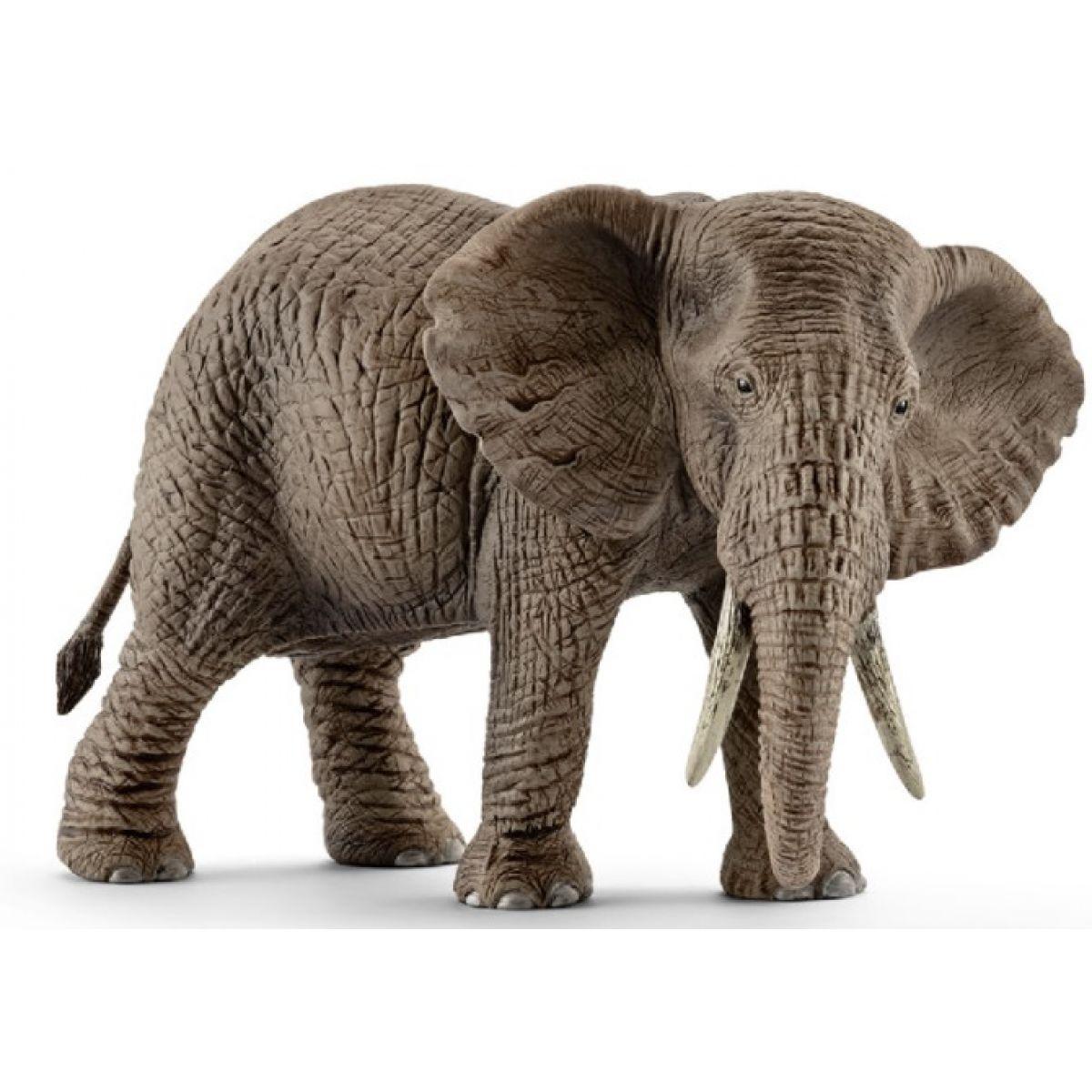Schleich Slon africký samica