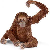 Schleich 14775 divoké zvieratko opica orangutan samica