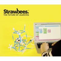Strawbees Coding & Robotics 6